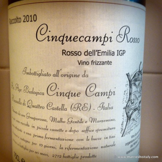 my preferred Lambrusco - Cinque Campi