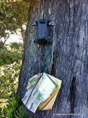 telephone at Lee Bay NZ