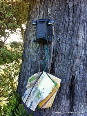 telephone at Lee Bay NZ