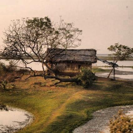 Orissa, India - 2011