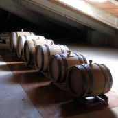 balsamic barrels in our attic
