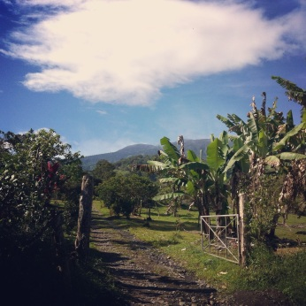 view of Turrialba Volcano in the distance