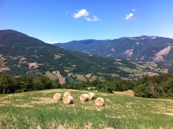 fields in the Appennines