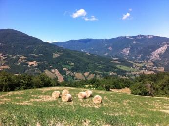 fields in the Appennines